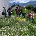 Exkursionsgruppe mit Blumenwiese