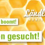 Honigproduzenten gesucht